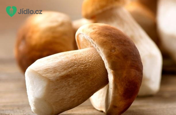 Top 10 jedlých hub
