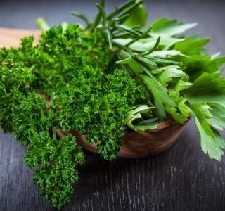 5 klasických bylinek do české kuchyně a jejich pozitivní účinky na zdraví