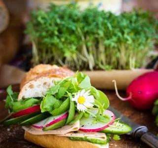 Blíží se čas sedmikrásek a jedlých květin! Ozdobte si talíř!