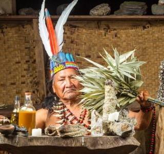 Guarana - skvělý pomocník při očistě těla…