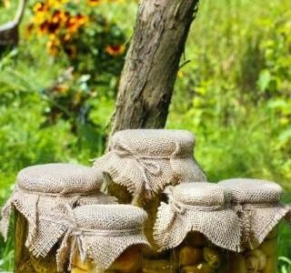 Jak nakládat houby a zeleninu