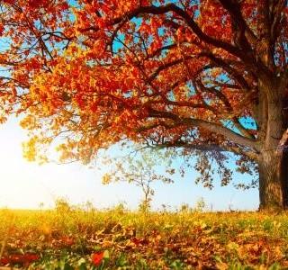 Končí léto plné slunce a tepla? Říjen sice hlásí příchod podzimu, ale ten má také svá kouzla.