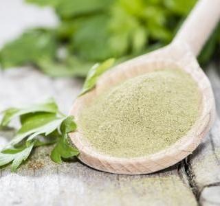 Libeček lékařský - aromatická bylina s antibakteriálními účinky...
