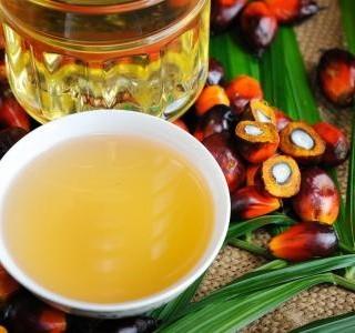 Palmový olej, co o něm vlastně víte?
