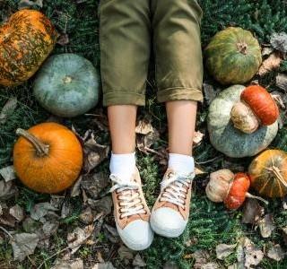 Top plodiny pro září 2020 aneb jezte sezónně…