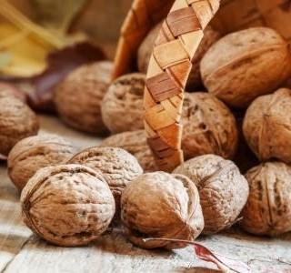 Vlašský ořech - elixír života