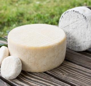 Výjimečná chuť kozího sýra