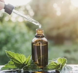 Vyzkoušejte kopřivovou kůru a detoxikujte svou krev a organismus...