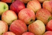 Přesnídávka z jablek